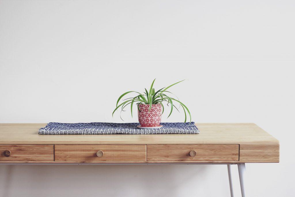 houseplants for bad odors